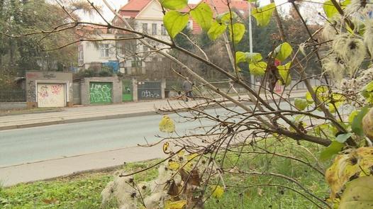 Nympho rides a grandpa in bushes | Czech Experiment 11