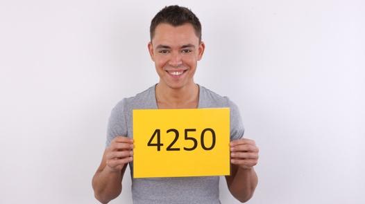 CZECH GAY CASTING - ZDENEK (4250)