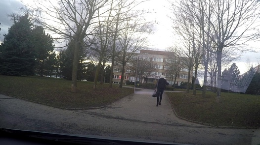 Vollbusige blonde Miezekatze | Czech Taxi 34