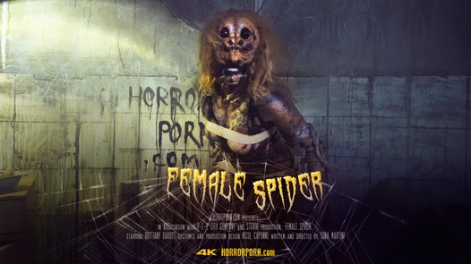 Female spider