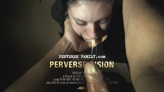 Perverse Vision